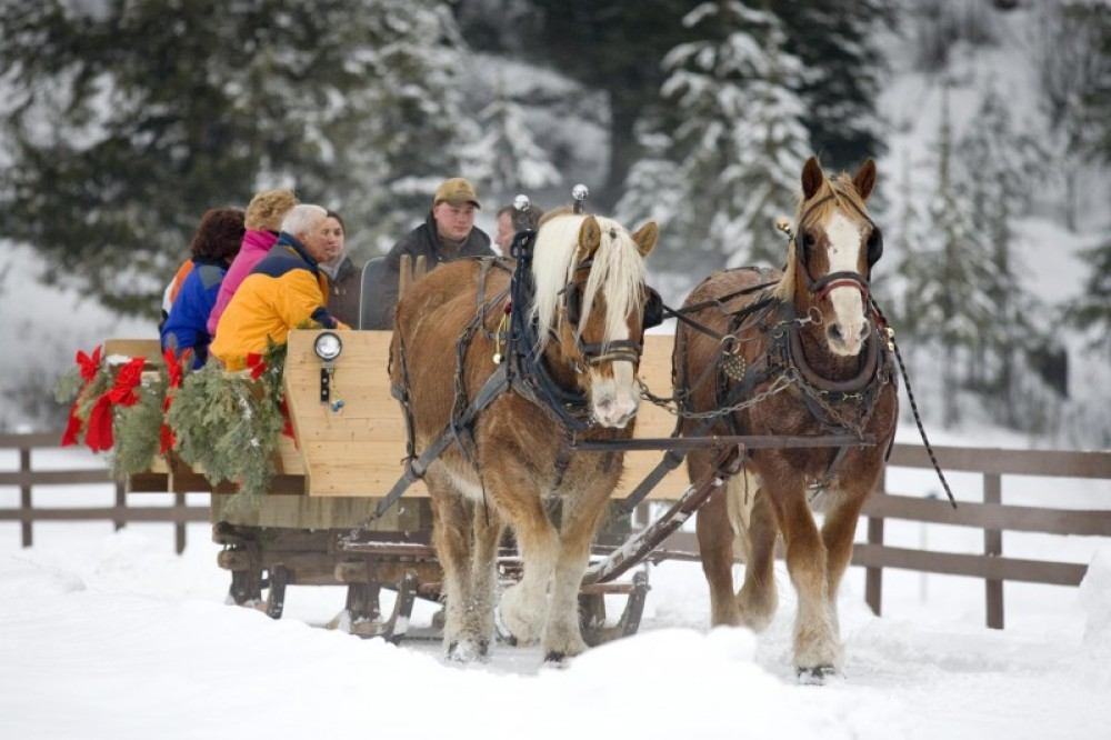 Sleigh Ride at The Bar W Guest Ranch.
