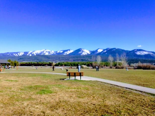 Dog-Friendly Places in Whitefish | Whitefish Montana Lodging, Dining