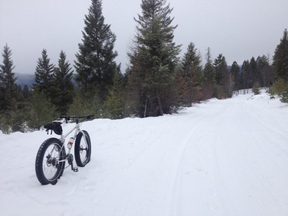 Fat Biking Around Beaver Lake