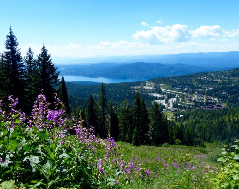 With easy access to hiking, the lake, and of course wonderful downtown Whitefish, you'll love staying at Snow Bear in the summer