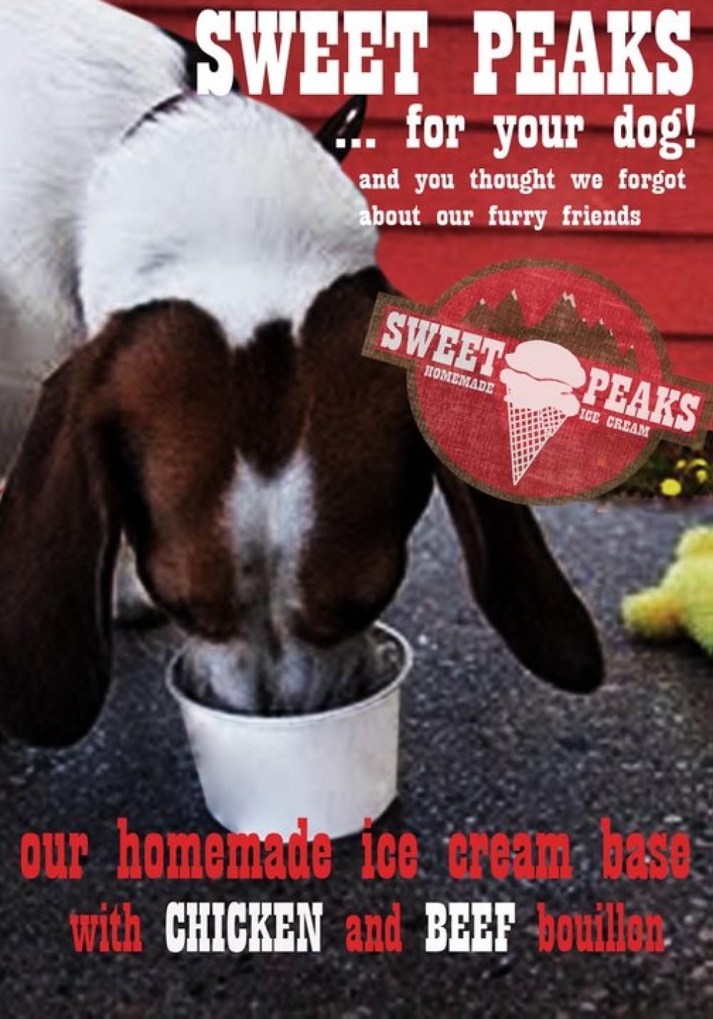 Puppies Love Ice Cream! – Samuel Dauenhauer