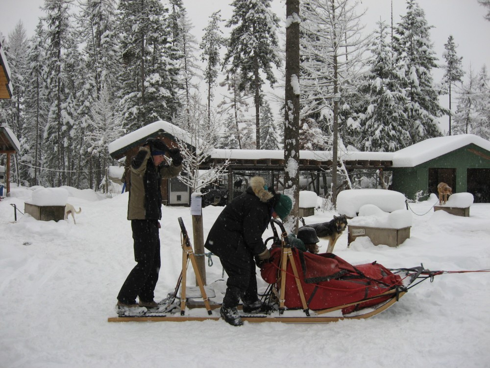 Butch and two clients getting ready to leave the dog yard. One of the clients is in the sled and the other client is behind Butch on the sled. – Sara Parr