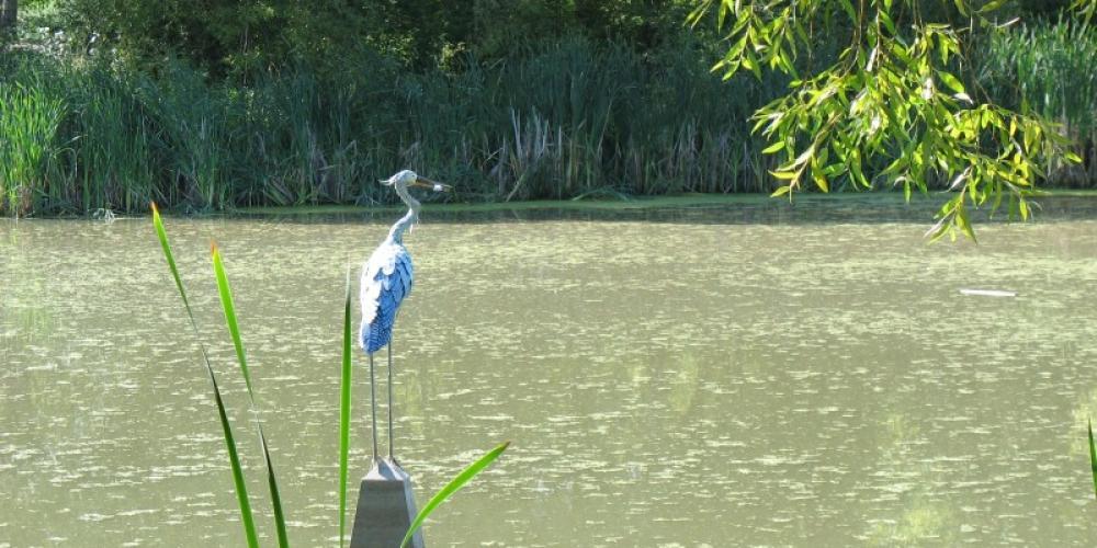 Pond at Riverside Park – Jan Metzmaker