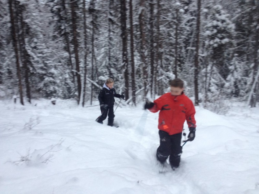 Snowshoeing From The Whitefish Bike Retreat – Cricket Butler
