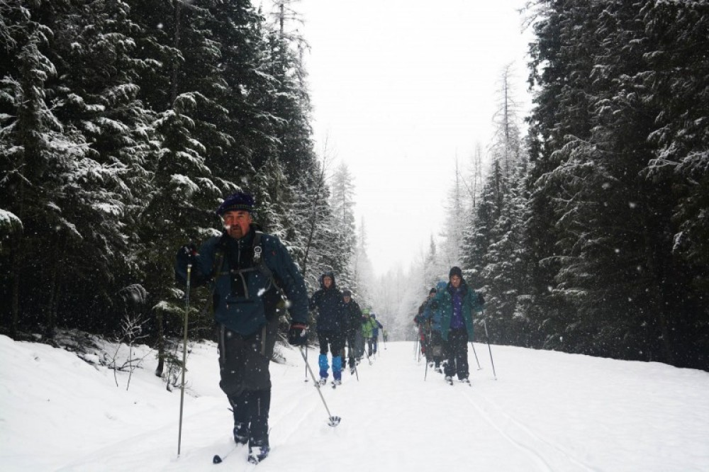 A Road Scholar cross-country ski tour led by Glacier Adventure Guides. – Devin Schmit