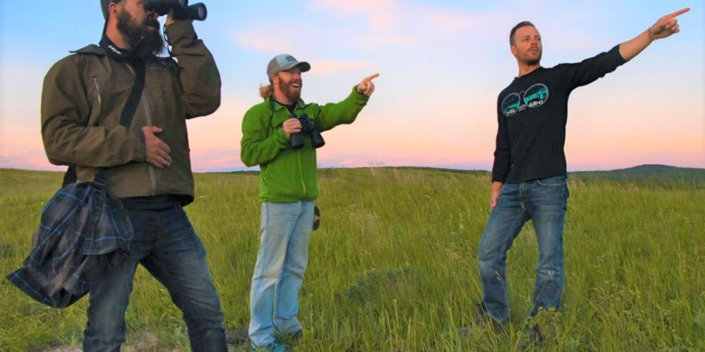 Join a Wildlife Walk at Twilight!