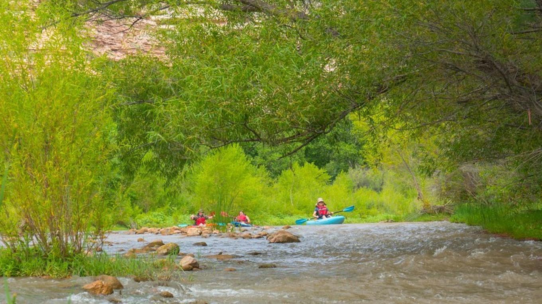 Kayaking on the Verde! – Doug Von Gausig