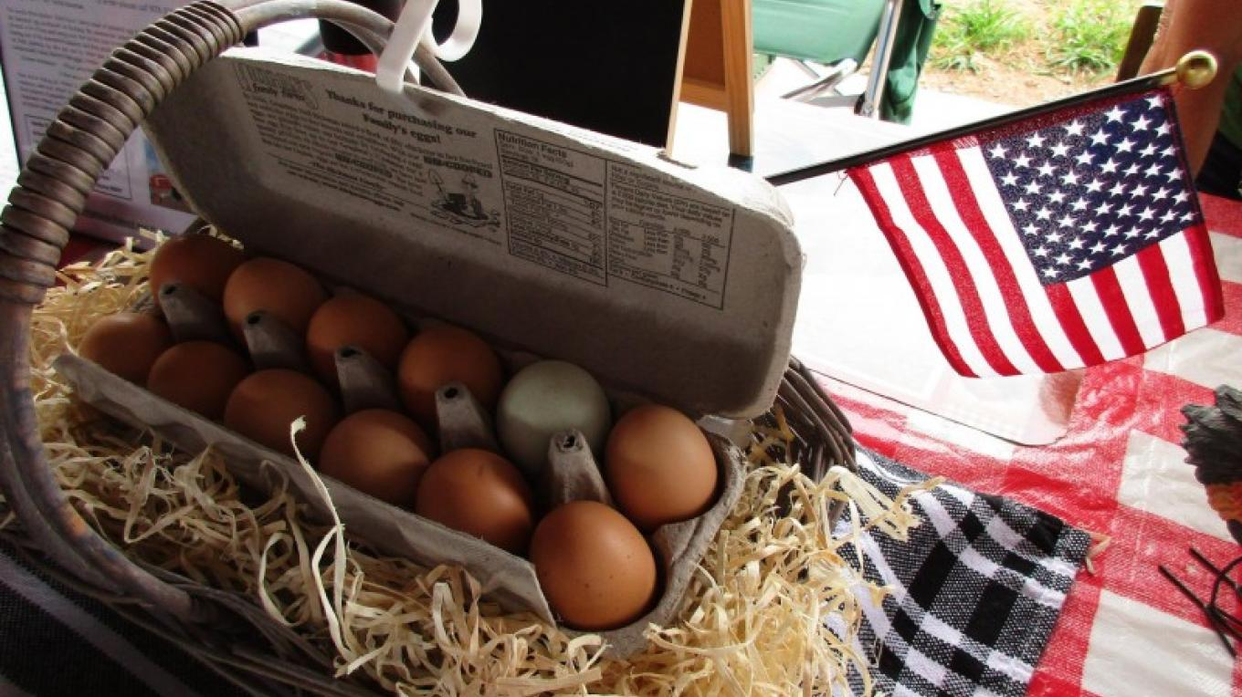 Dru adds that special touch to her fresh eggs from pasture raised hens display. – Farmers Market