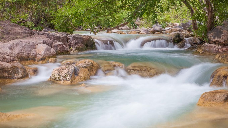 Fossil Creek – Valerie Millet