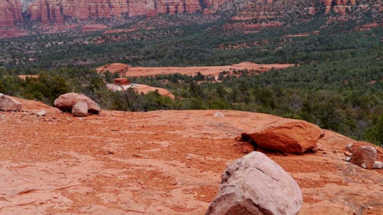 Typical trail – William Bohan