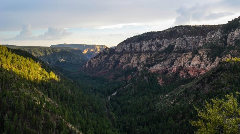 View of Oak Creek Canyon from Overlook – Dalton Zanetti