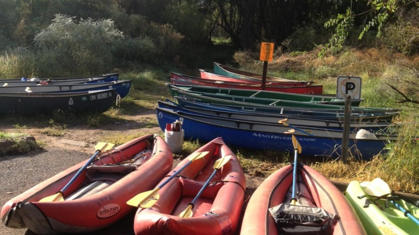 All lined up ready to go! – Susie Beach