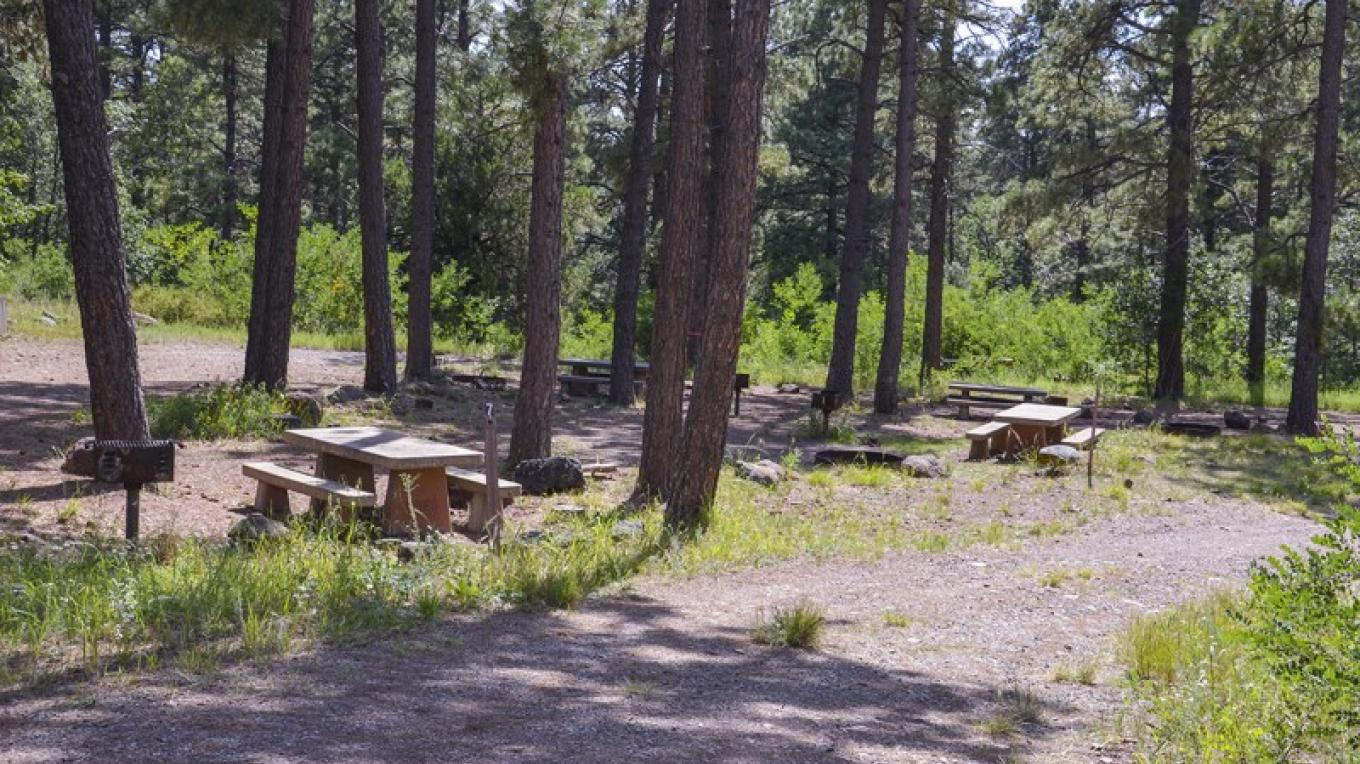 Historic tent loop in Mingus Campground. RVs and trailers must use the larger camp sites in E-Loop. – USDA Forest Service