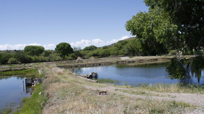 Trout pond network. – Dennis Tomko