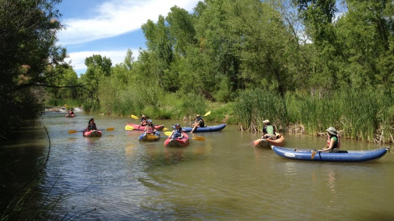 Floating through the Gooding Willow and Cottonwood forest – Gayle Mabery