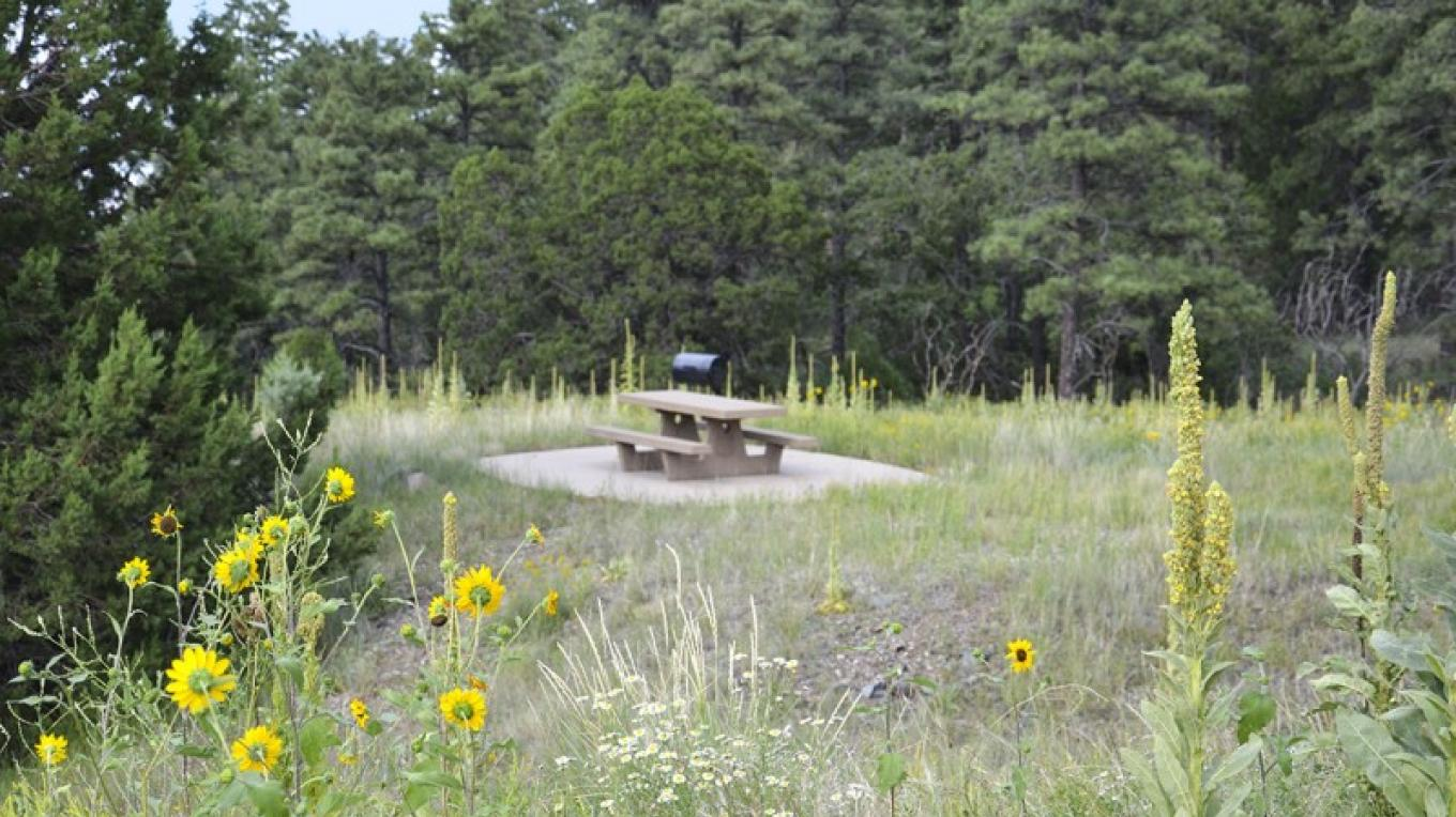 Summit Picnic Area is on Hwy 89-A where Forest Road 106 leads to Potato Patch Campground and Woodchute Trailhead, and Forest Road 104 heads up to the eastern end of Mingus Mountain Recreation Area. – USDA Forest Service