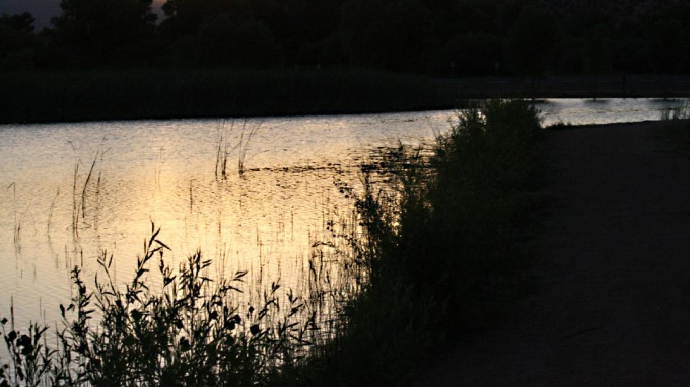 Sunset at a lagoon at Dead Horse Ranch State Park – Dennis Tomko