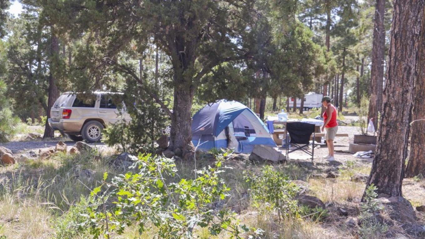 Tent camping in Mingus Campground. – USDA Forest Service