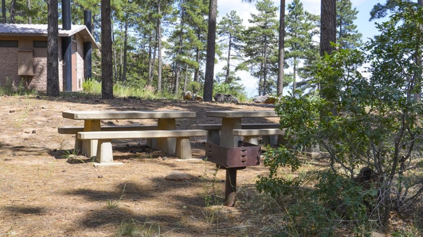 Mingus Picnic Area has picnic tables, grills, toilet and garbage facilities, ample parking, lots of shade, and great views nearby! – USDA Forest Service