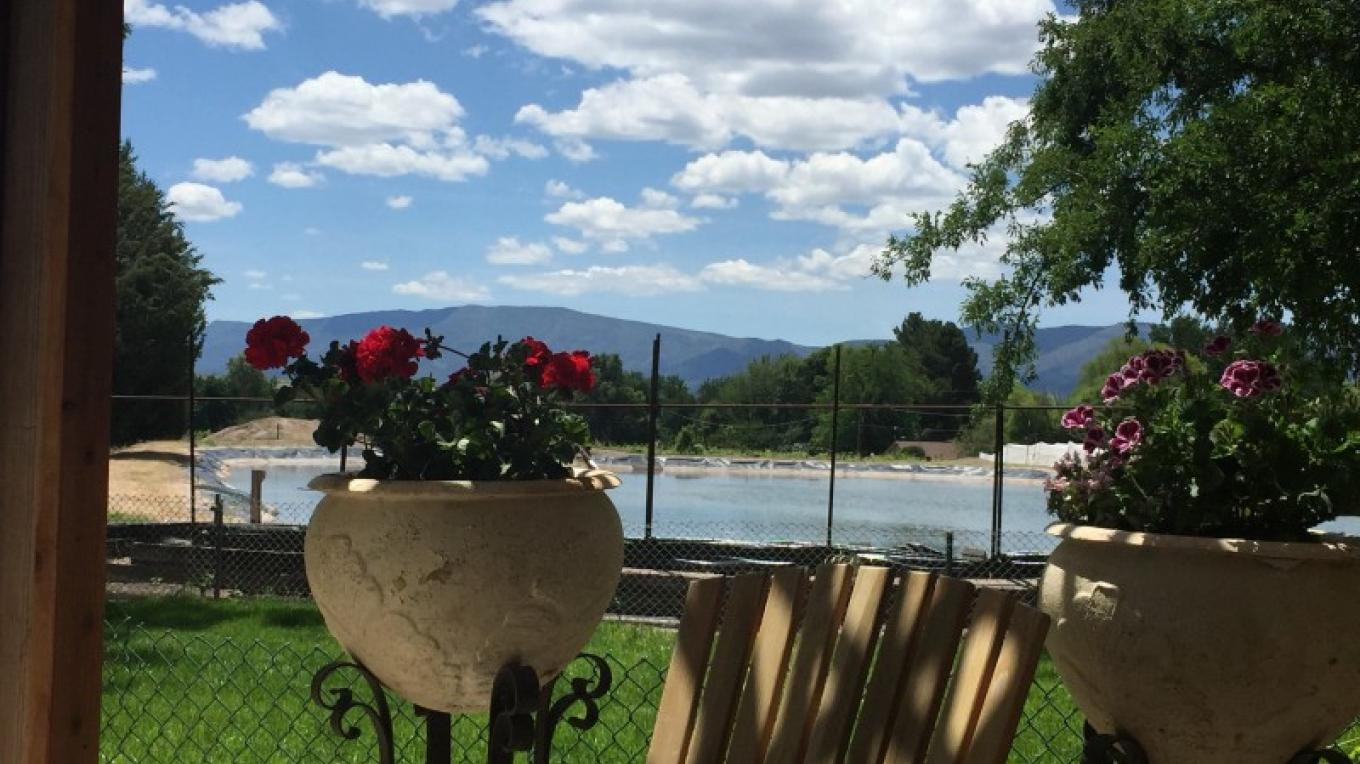Summer view from the patio – IM MESA