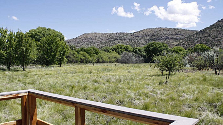 View from Blue Heron deck onto grasslands. – Dennis Tomko