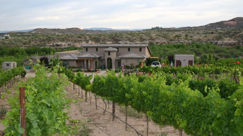 Alcantara Vineyards – Alcantara Vineyards