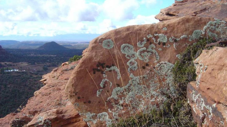 Interesting rocks – William Bohan