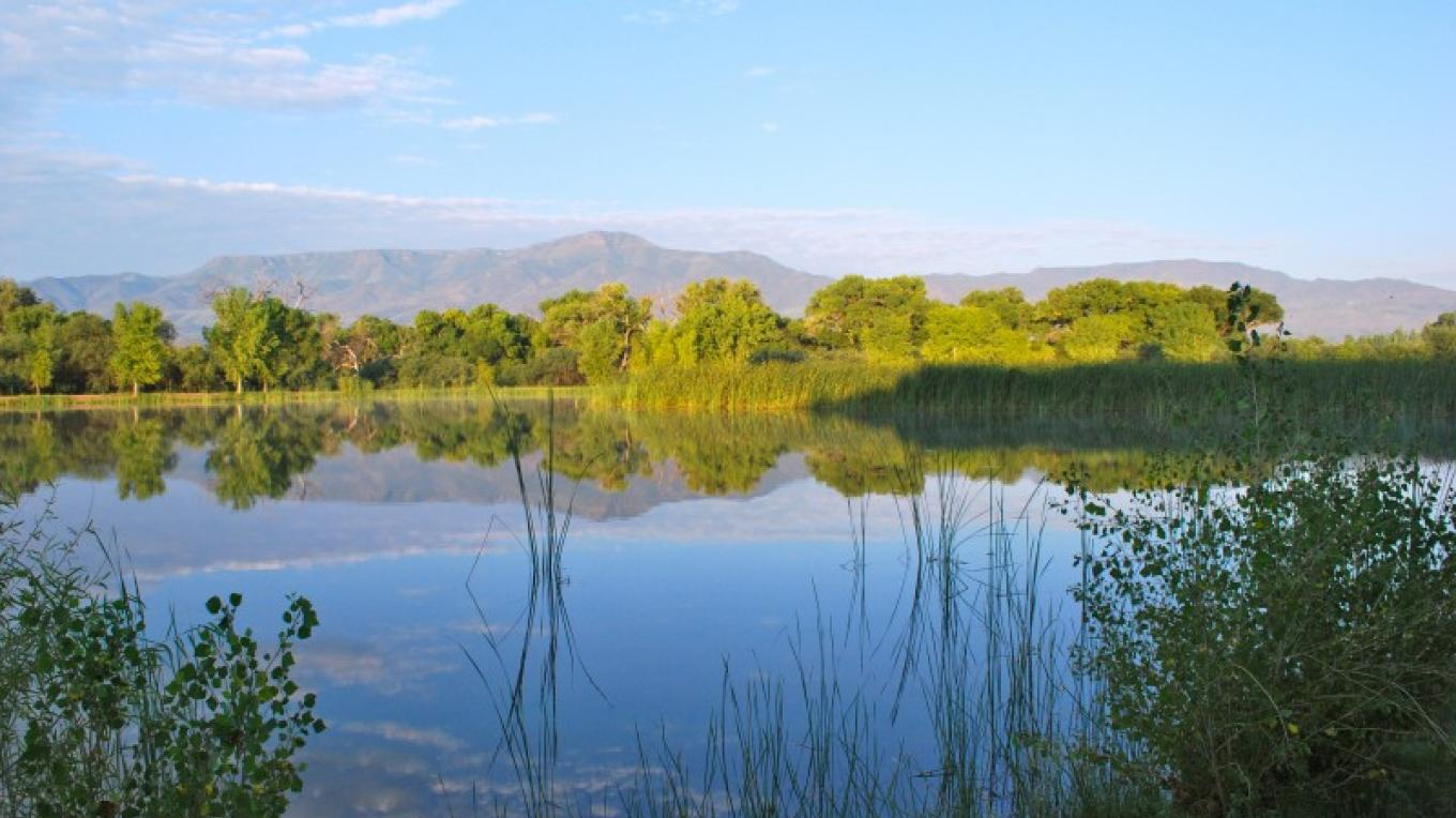 One of the stocked lagoons at Dead Horse Ranch State park features beautiful views of the Mingus Mountains. – Arizona State Parks
