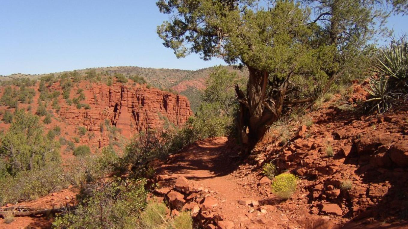 Unique hiking trails at Red Rock State Park. – Arizona State Parks