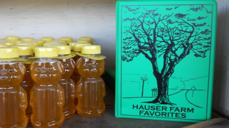 Yummy Honey and Yummy Recipes. – Barbie Bridge