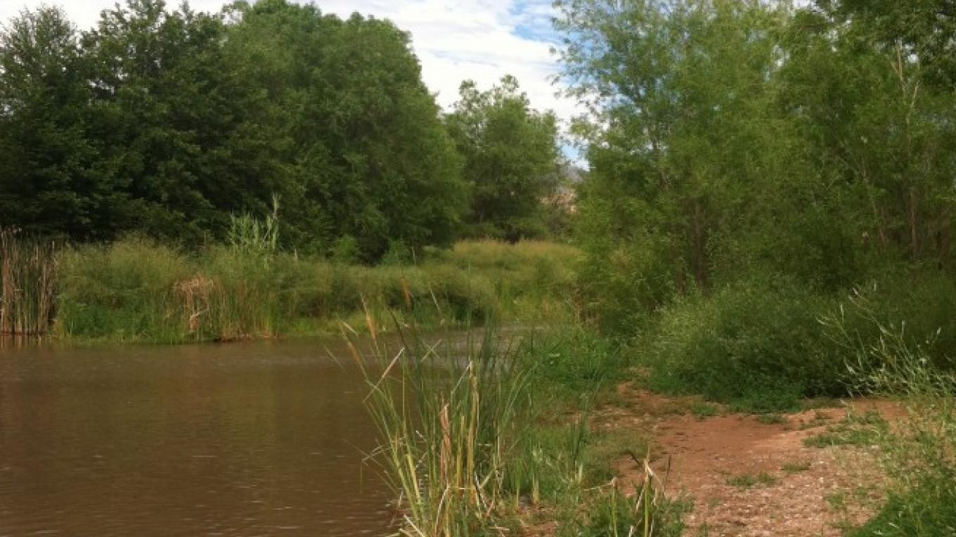The beautiful Verde River – Jodie Filardo