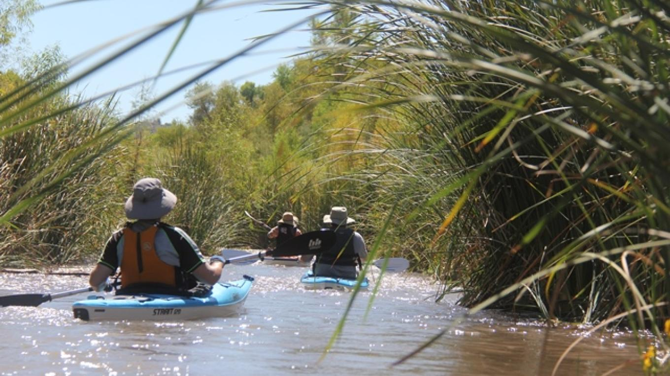 Unspoiled riparian areas along the Verde River – Gayle Mabery
