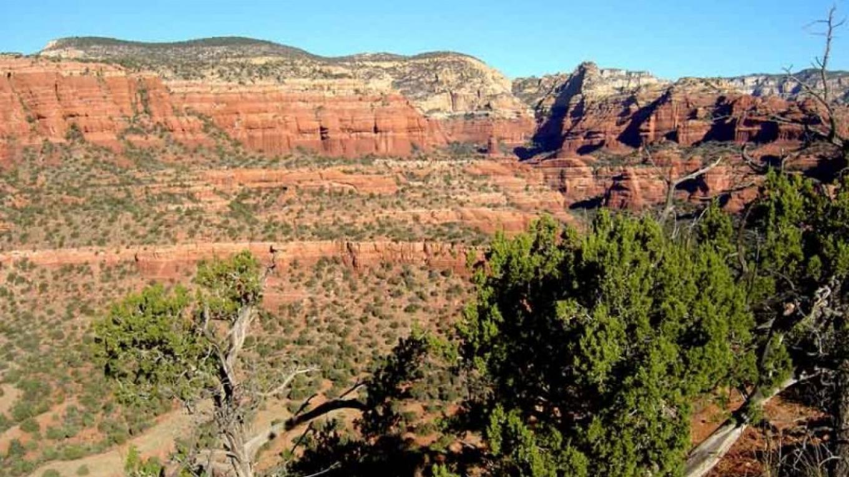 View of Boynton Canyon – William Bohan
