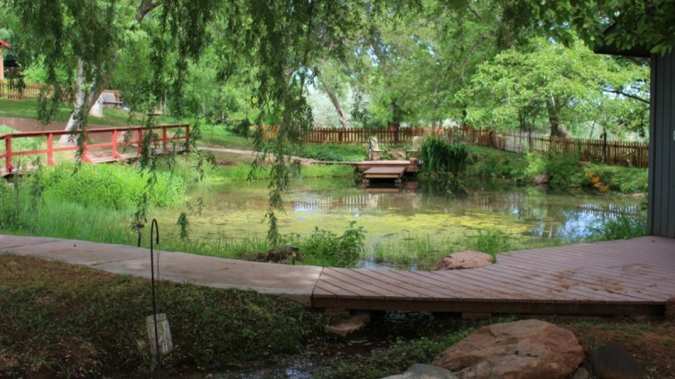 Small Pond below guest suites – Shirley Millar