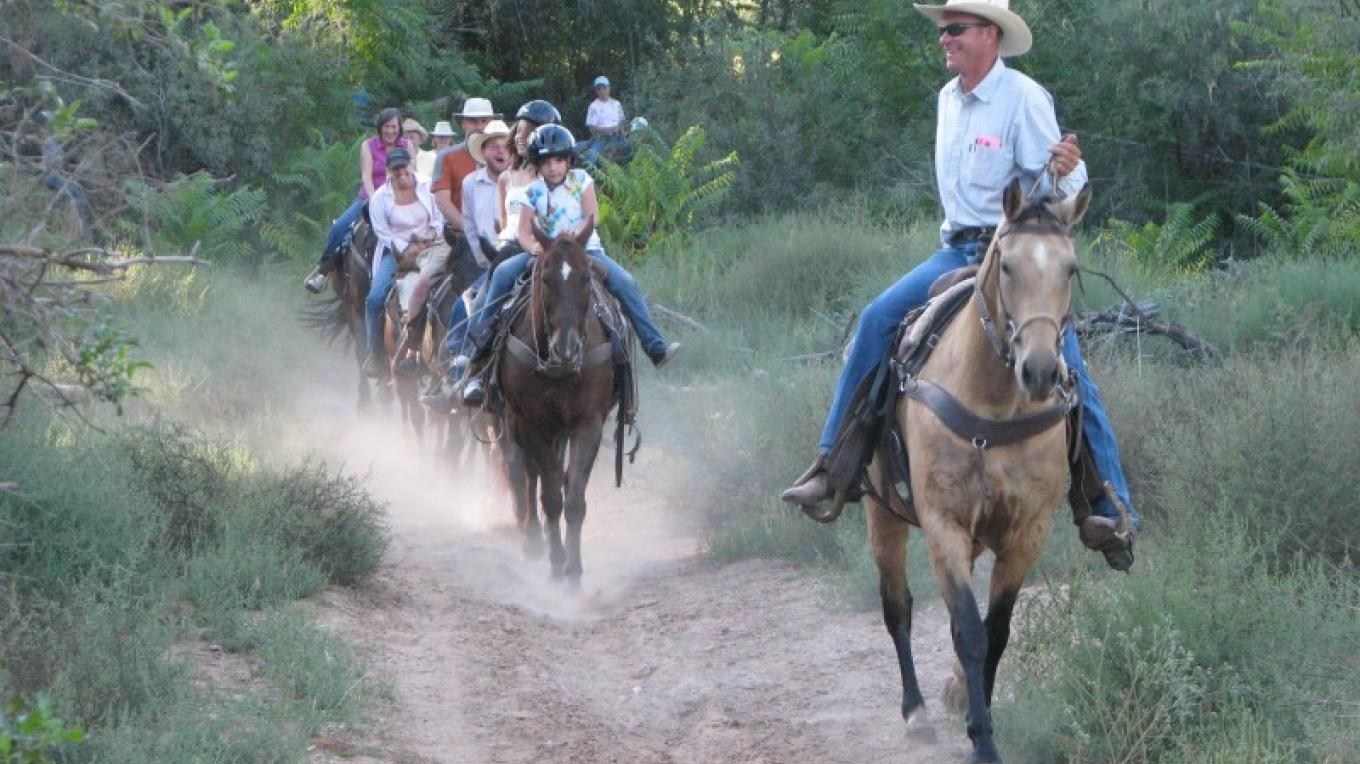 Experience the beauty and wonder of the land from horseback! You can rent a horse inside the park at Trail Horse Adventures – Arizona State Parks