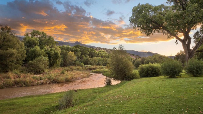 River shot – Ian Whitehead