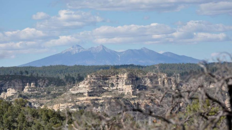 San Francisco Peaks some 40 miles away – William Bohan