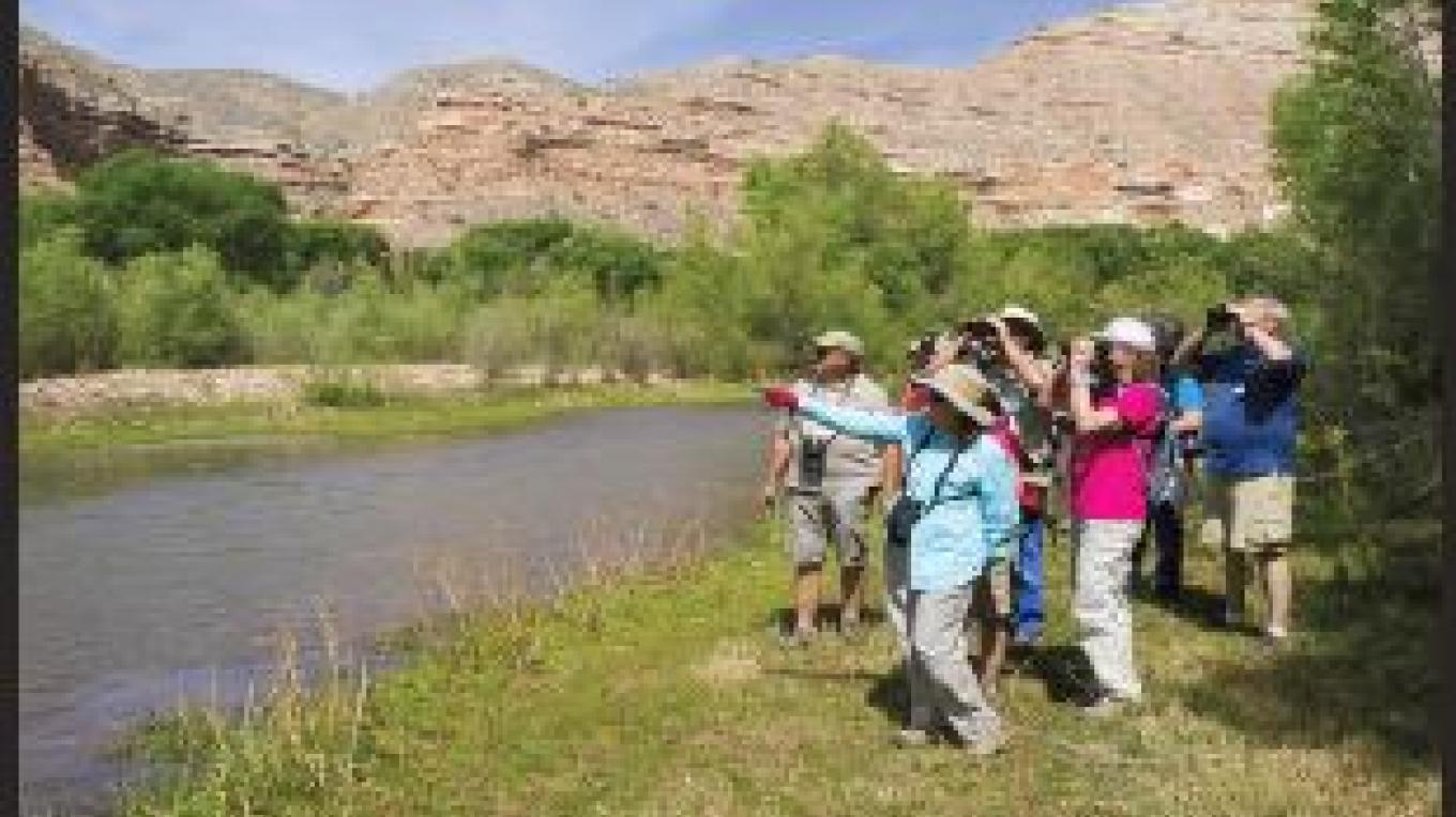 Birders at Lower TAPCO RAP – Doug Von Gausig