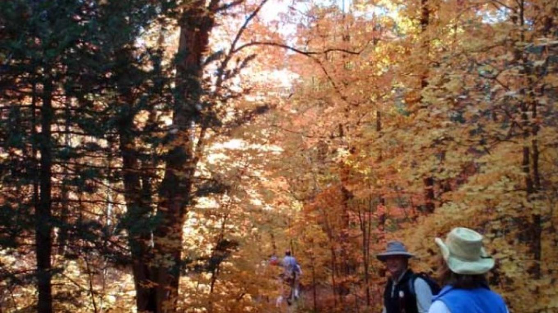 Fall colors – William Bohan