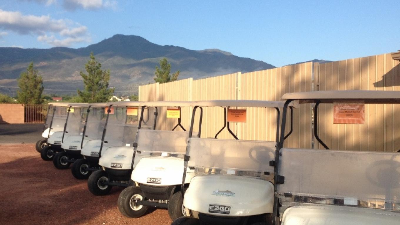 Our new electric carts! – Lisa White