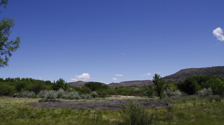 The grasslands. – Dennis Tomko