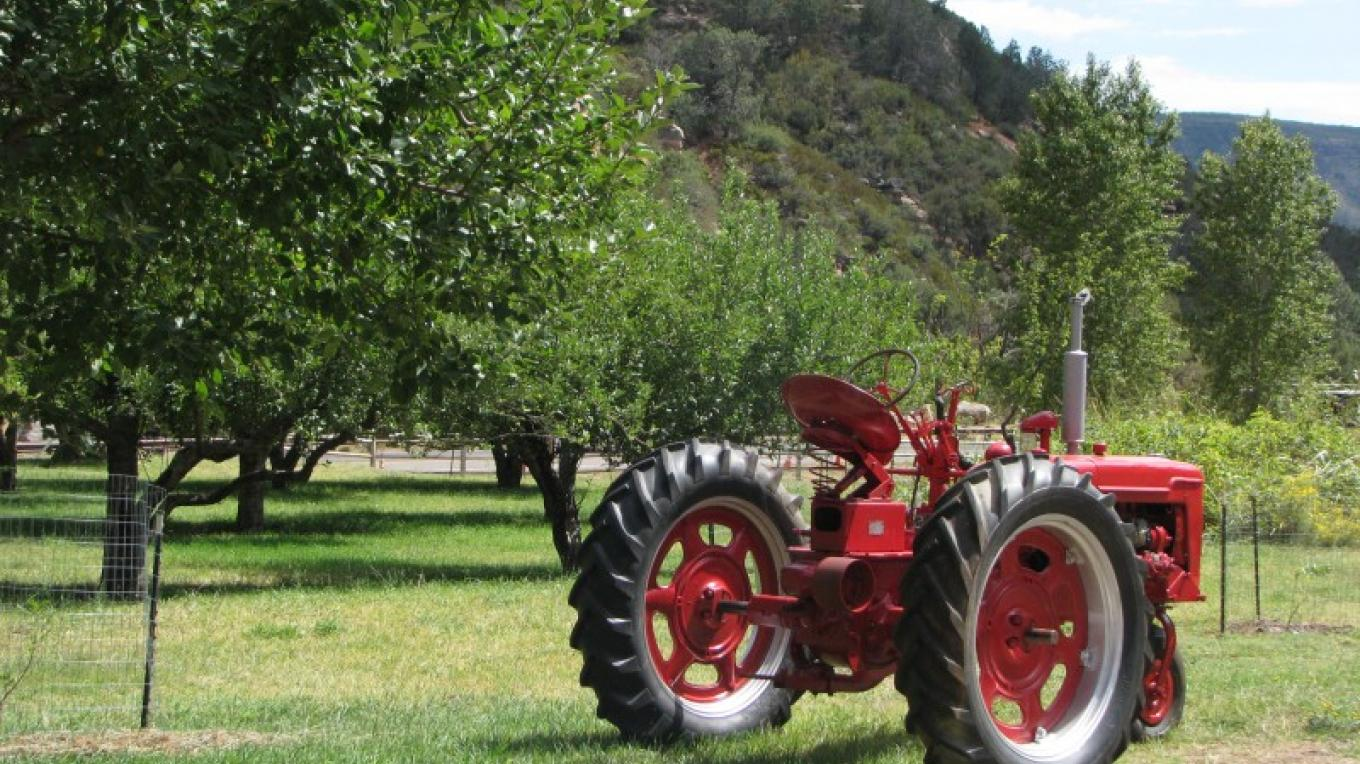 The historic apple orchard at Slide Rock State Park in Sedona, Arizona. – Arizona State Parks