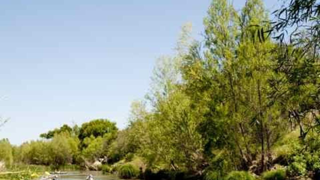 Kayaking on the Verde River is a great family adventure. – Al Comello