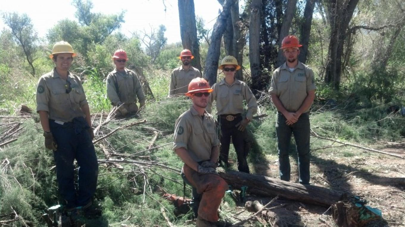 AZ Conservation Corps Crews support the improvement of riparian habitat through the Verde Watershed Restoration Coalition (VWRC). – Laura Jones