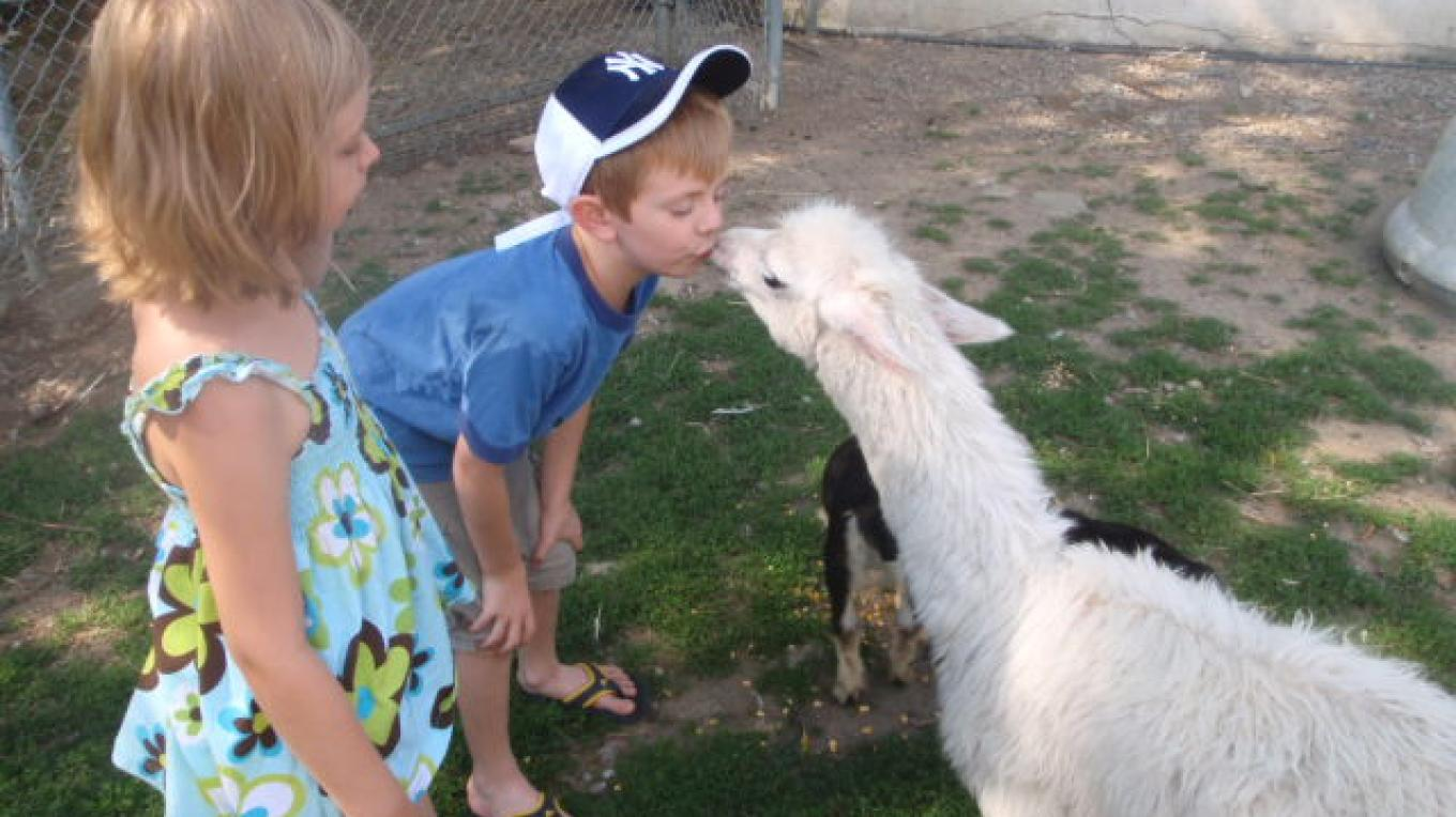 Children love to interact with the farmstock. Arron and Brianna Dunn enjoy a smooch with Timmy the llama. – Lori Space Day