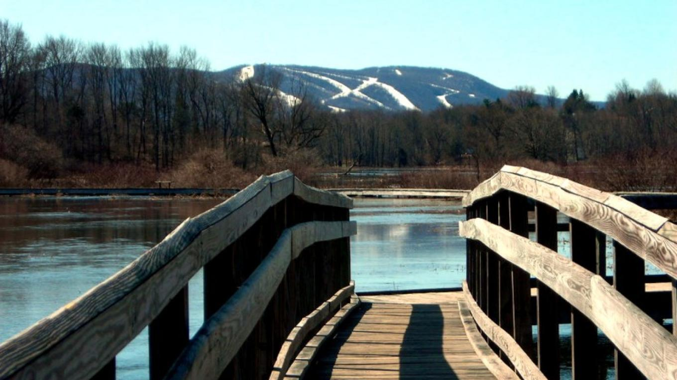 On a clear day, one can see the entire Vernon Valley and the ski trails from the suspension bridge. – Sacha Dorsey