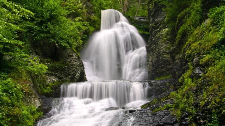 Dingmans Falls in Summer – Michael Pyle