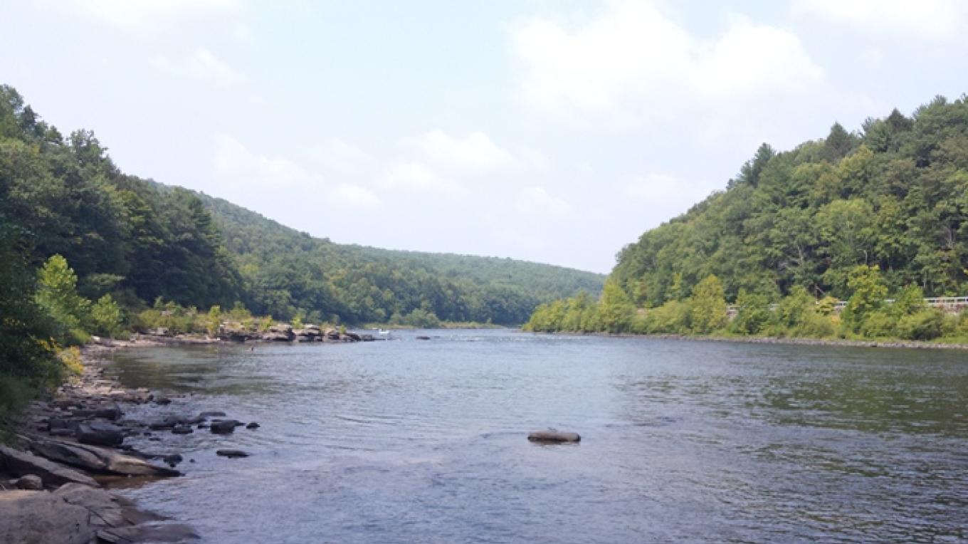 View looking upstream on the Delaware River from the camping area.