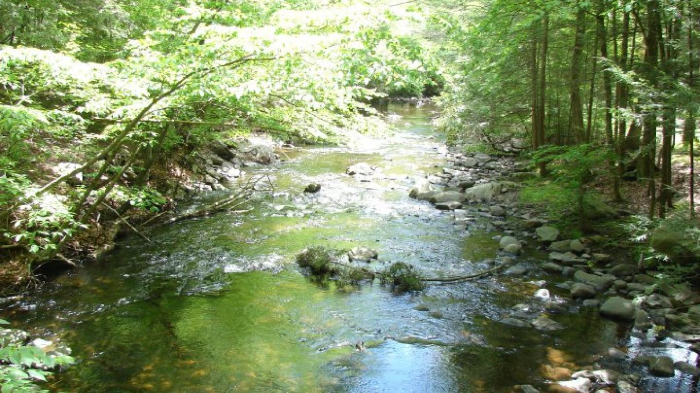 "Camp beside our beautiful creek, listen to the ""peepers"" at night and relax as you enjoy the rustic beauty of the Catskill Mountains. – Kittatinny canoes, Inc"