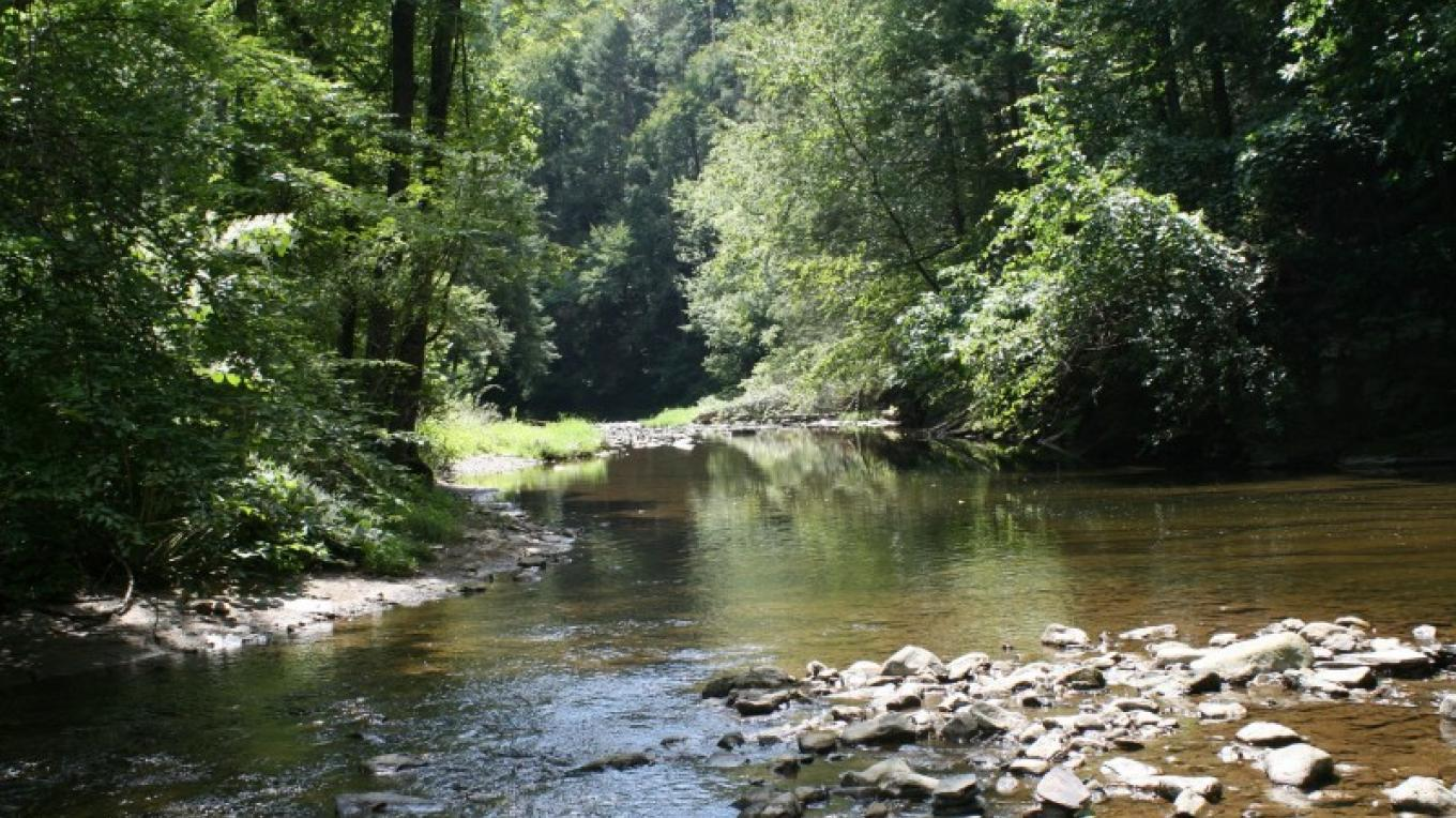 The beautiful Bushkill Creek running through the Henry's Woods section of the park. – Rick Wiltraut